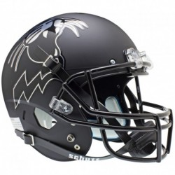 Northwestern Wildcats Full XP Replica Football Helmet Schutt Matte Growling Wildcat